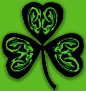 HVN Ireland Logo