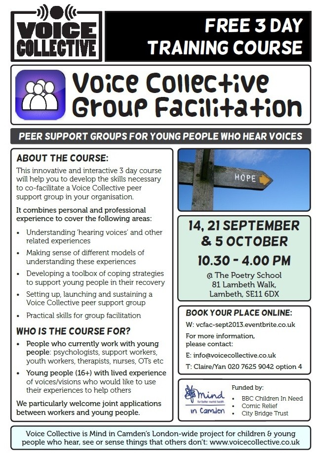 Voice Collective Group Facilitation