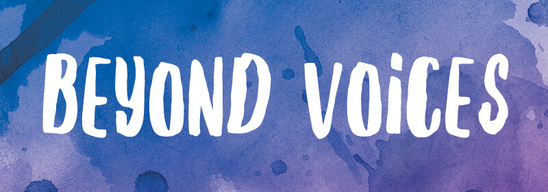 Consultant beyond voices survey